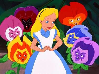 Alice All Video