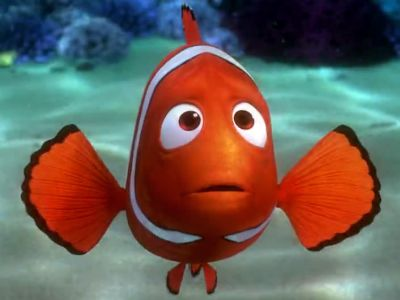 Fish are friends not food finding nemo for Finding nemo fish names