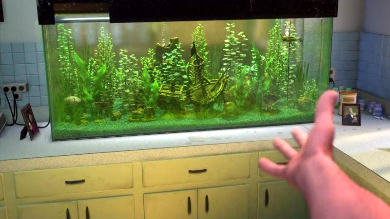 Where'd the fish go   Finding Nemo