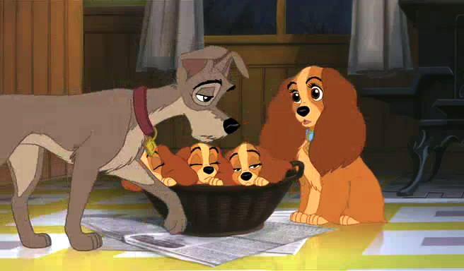 Always There | The lady and the tramp Wiki | FANDOM ...