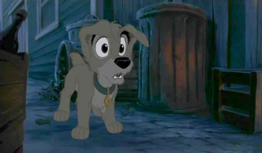Tramp From Lady And The Tramp 2