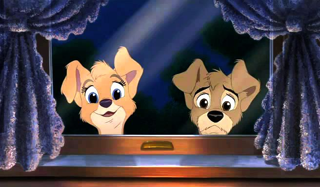 Lady And The Tramp Ii Video Quotes To Have What You Have Disney Videos