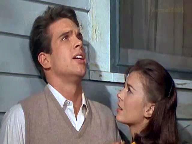 Splendour in the grass 1961 online dating
